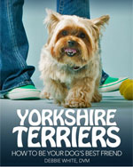 ebook-yorkie