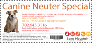 LMAH Canine Neuter Special