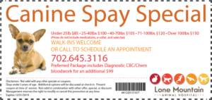 LMAH Canine Spay Special