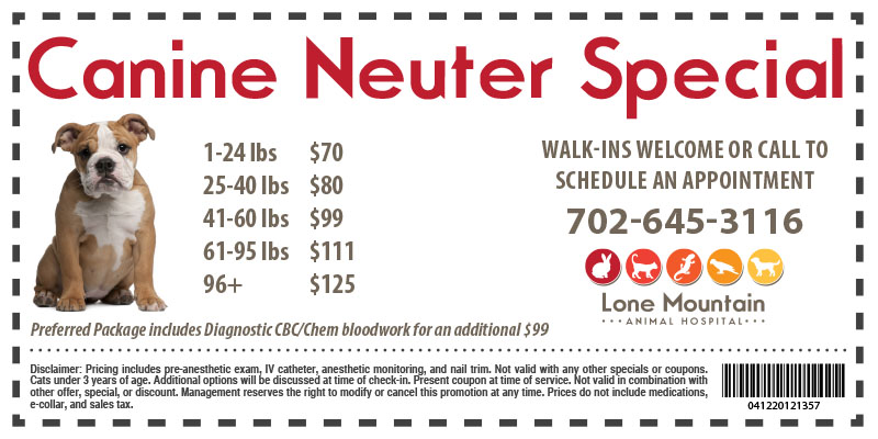 Canine Neuter special Lone Mountain Animal Hospital