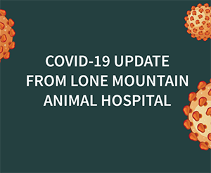 A Message from LMAH Regarding COVID-19